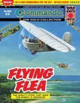 Flying Flea